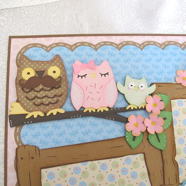 OwlsCU